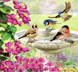 Craft Buddy- Card Kit-Diamond Painting Birds (partial)- Multi Color