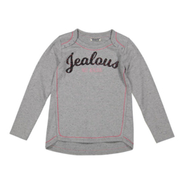 Girls T-shirt l.s- DJ Dutch Jeans- Grey Melee