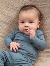 Dirkje-Baby Boys t-shirt l.s Bio Cotton -Dusty Green
