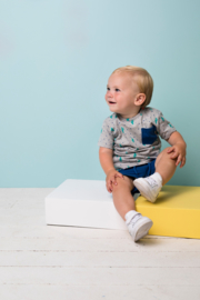 Bampidano- Baby Boys short sleeve T-shirt Ewan AO/yd stripe + chest pocket CACTUS-Grey melee aop