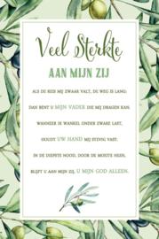 Baaij Light Cards-Wenskaart veel sterkte-White-green
