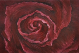Het rozen hart