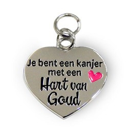 Hart van Goud  Charms for you-Miko-zilver