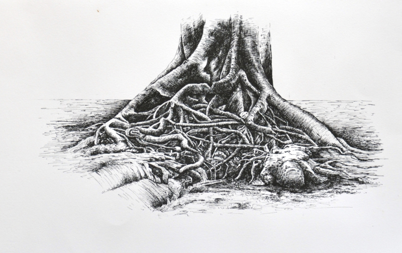 A tree rooted on the waterfront, Incl passepartout