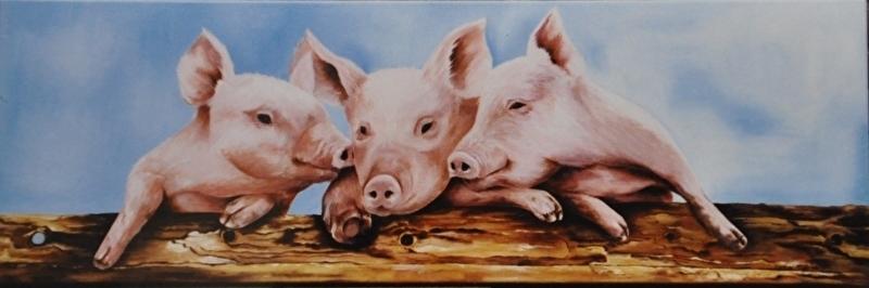 Dier varkens