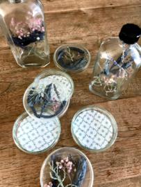 Petrischaaltje gevuld met droogbloemen