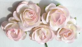Trellis Roses - 2-tone Soft Pink/White