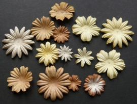 WILD ORCHID CRAFTS - MULBERRY PAPER BLOOMS - 20 stuks Assorti Bruin/Creme 2 cm - 5 cm