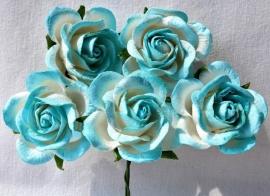 Trellis Roses - 2-tone Skyblue/White
