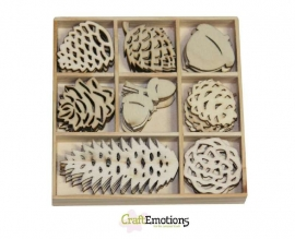 CraftEmotions Houten ornamenten doosje WinterWoods denneappel 40 stuks