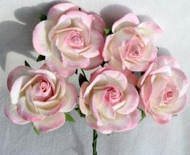 Trellis Roses - 2-tone Pink/White