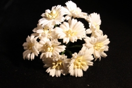 WILD ORCHID CRAFTS - WHITE COSMOS DAISIES