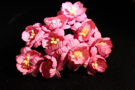 WILD ORCHID CRAFTS - PINK COSMOS DAISIES