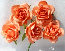 Trellis Roses - Light Orange