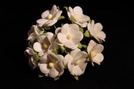 WILD ORCHID CRAFTS - SWEETHEART BLOSSOM WHITE  15 mm - bosje met 10 stuks