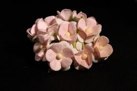 WILD ORCHID CRAFTS - SWEETHEART BLOSSOM 2-TONE PALE PINK 15 mm - bosje met 10 stuks