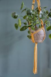 DIY pakket macramé plantenhanger geel