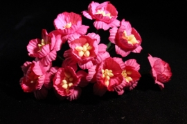 WILD ORCHID CRAFTS - BRIGHT PINK COSMOS DAISIES