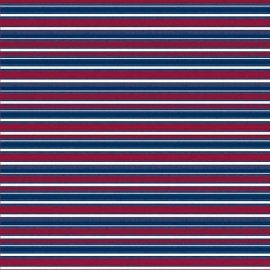 Hot Off The Press - Patriotic Star Stripe