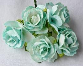 WILD ORCHID CRAFTS - 2 Tone Aqua Paper Wild Roses 30mm - 5 stuks