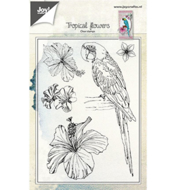 Joy!crafts - Clearstamps - Papagaai en bloemen