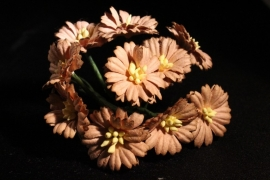 WILD ORCHID CRAFTS - LIGHT BROWN COSMOS DAISIES