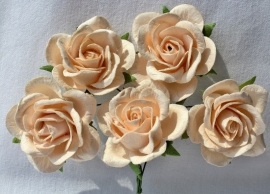 Trellis Roses - Light Peach