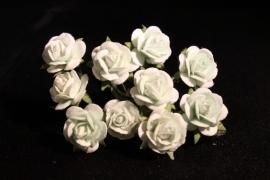 WILD ORCHID CRAFTS - MULBERRY PAPER OPEN ROSES 15 mm - Mint Green - bosje met 10 stuks