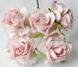 WILD ORCHID CRAFTS - Pale Pink Paper Wild Roses 30mm - 5 stuks