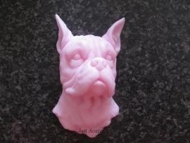 Boxer met gecoupeerde oren 2
