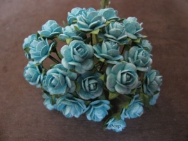 Roosjes Turquoise 10mm