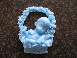 Baby in bloemenmand jongen