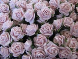 Roosjes Pale Pink 10mm