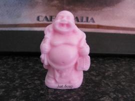Boeddha 8