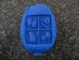 Tulp Holland