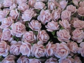 Roosjes Baby Pink 10 mm