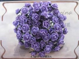 Roosjes Purple 10mm