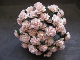Roosjes Pale Peach 10mm