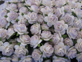 Roosjes 2 Tone Pale Lilac 10mm