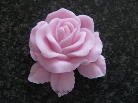 Roos met blaadjes