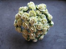 Roosjes Lime Green 10mm