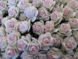 Roosjes 2 Tone White / Baby Pink 10mm