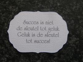 Label Succes is niet de sleutel..