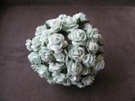 Roosjes Pastel Green 10mm