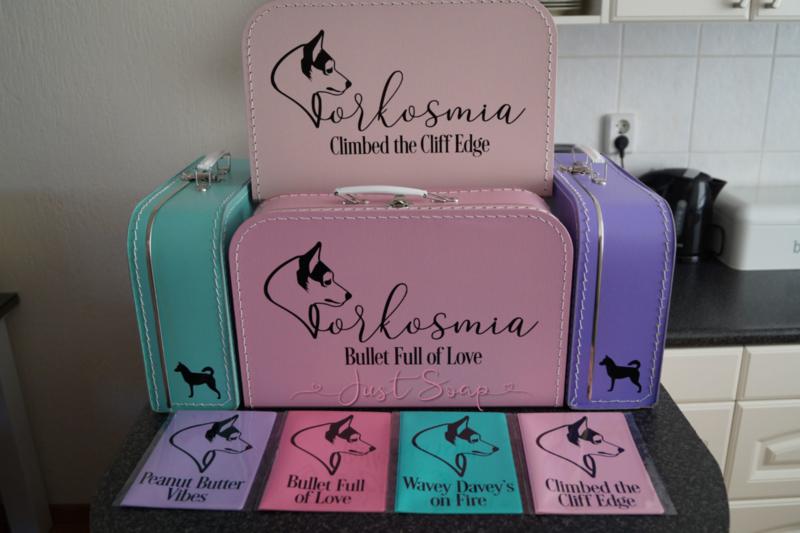 Koffertjes Voorbeelden
