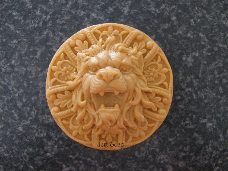 Leeuw op tablet