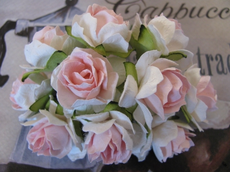 Roosjes Baby Pink / White 30 mm