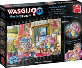 Wasgij Mystery 17