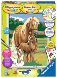 Paardenliefde