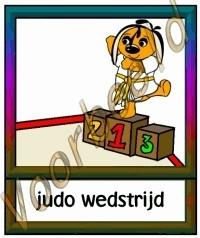 Judo wedstrijd